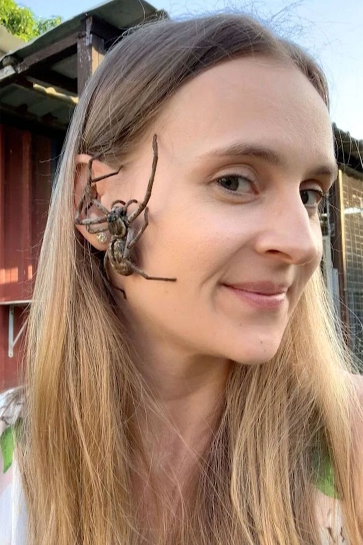 WATCH! Woman relaxes by letting spiders crawl on her FACE
