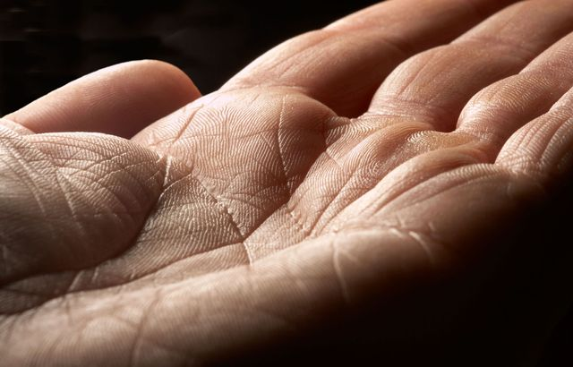 What the lines on your palms are really for